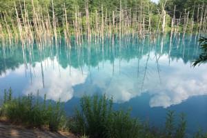 青い池(2014年夏)