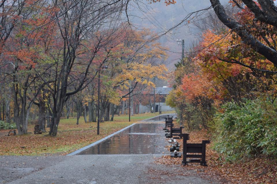 10月の北海道は吹雪あり?紅葉の北海道を旅する(2015秋)