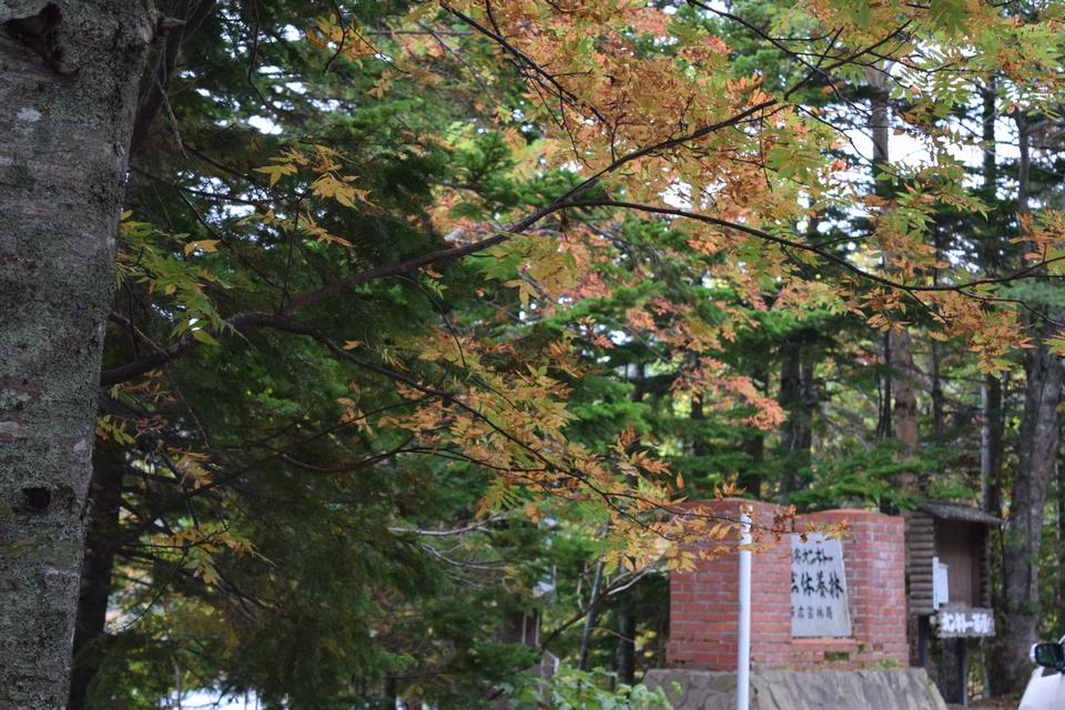 マトンの北海道ひとり旅!少し色づき始めた秋の帯広周辺をぶらりと巡る
