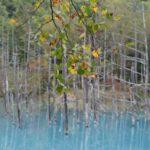 夏だけではない。秋の北海道で訪れたい場所を考える(富良野・美瑛)