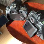 もしもカメラをCanonに変えたら?Nikon使用者がCanonを使ってみる