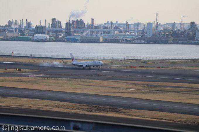 羽田空港-JAL-