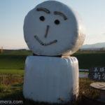 秋の美瑛を満喫!北海道 秋のひとり旅!GoProは旅の心強いパートナー