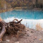 秋の美瑛2日目!夜明け前の望岳台と青い池