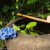 紫陽花を求めて川崎の浄慶寺へ!ユニークな羅漢像がお出迎え
